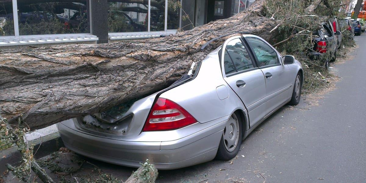 Von Winde zerlegt! Wann zahlt die Versicherung bei Sturmschäden am Auto?